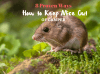 8 Proven Ways on How to Keep Mice Out of Camper