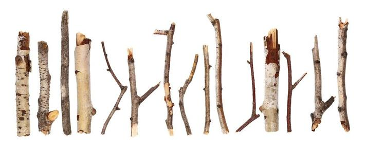 Small Twigs
